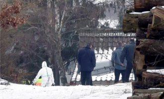 Тела на шест тинејџери најдени во градина во Германија