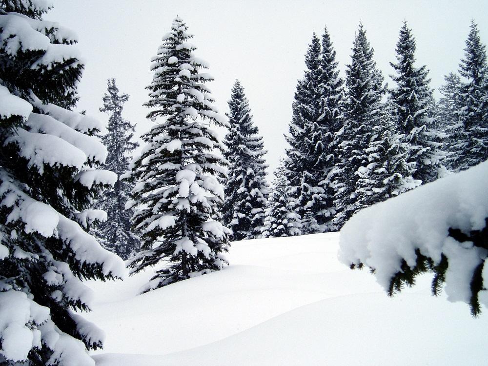 Облачно со повремени врнежи од снег