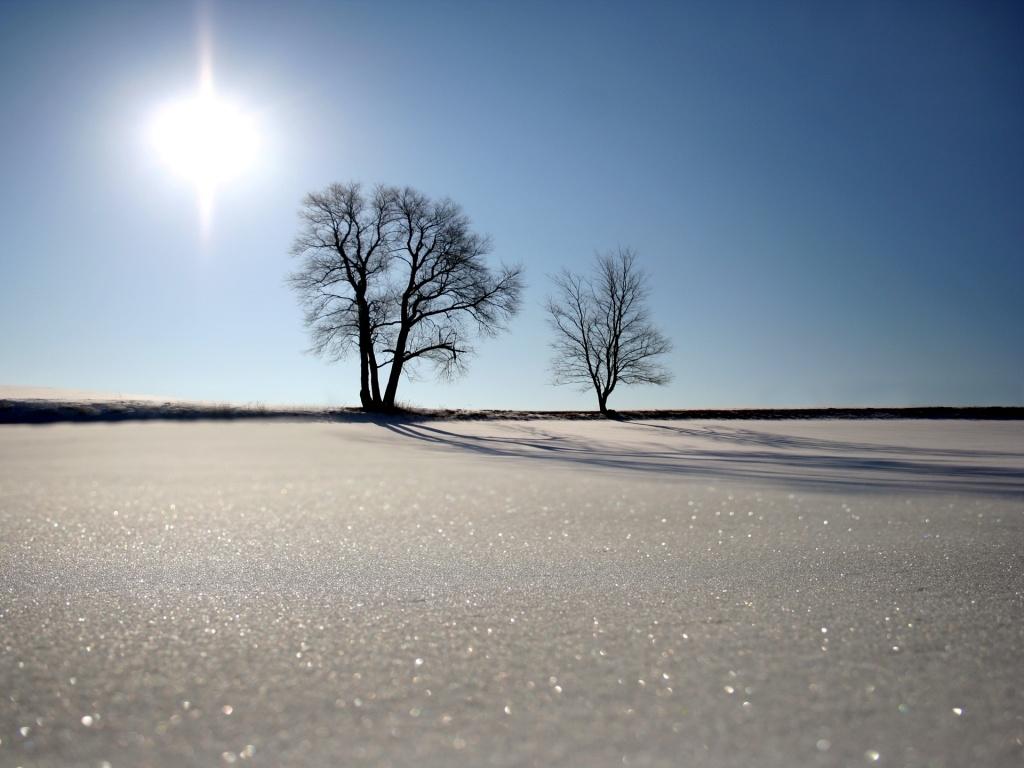Сончево  во западните делови со мала до умерена облачност