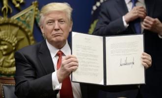Трамп го суспендира примањето бегалци, ОН го повикува да ги прифати