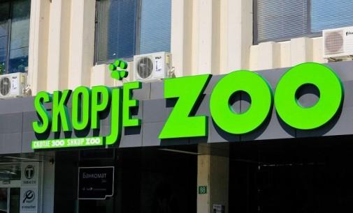Морскиот лав во ЗОО Скопје угинал од голтнат камен