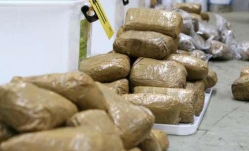 Поведена постапка против организирана криминална група поради трговија со дрога