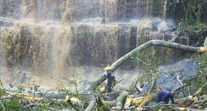 Стебло усмрти најмалку 18 луѓе што се капеле во езеро под водопад во Гана