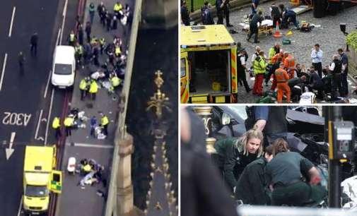 Напаѓачот од Лондон бил роден во Велика Британија