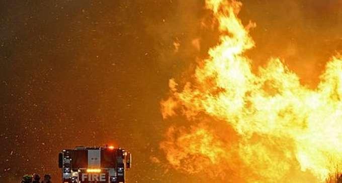Шест жртви на пожарите во четири американски држави