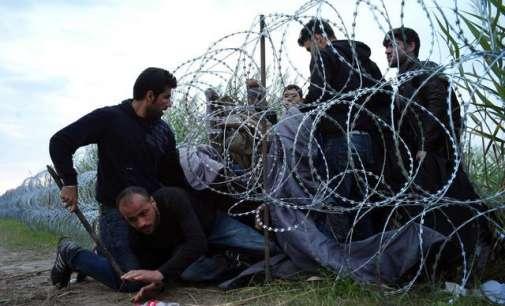 Унгарија до крајот на мај  ќе ја заврши втората ограда поставена долж границата со Србија