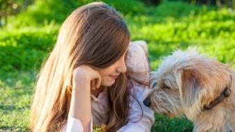 Човековите и кучешките бактерии не треба да се мешаат