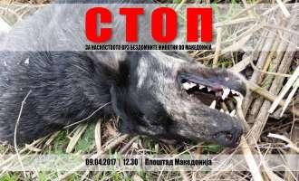 Протест во Скопје – Стоп за насилството врз бездомните животни во Македонија