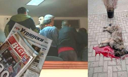 Државниот удар и пропаста на весниците, за убиецот на кучиња и да не зборуваме