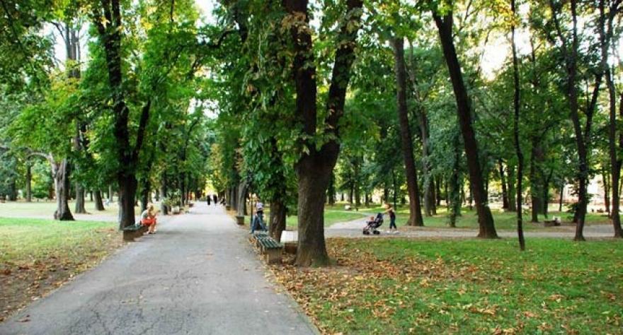 Општествено одговорни компании засадија дрвца во Градски парк