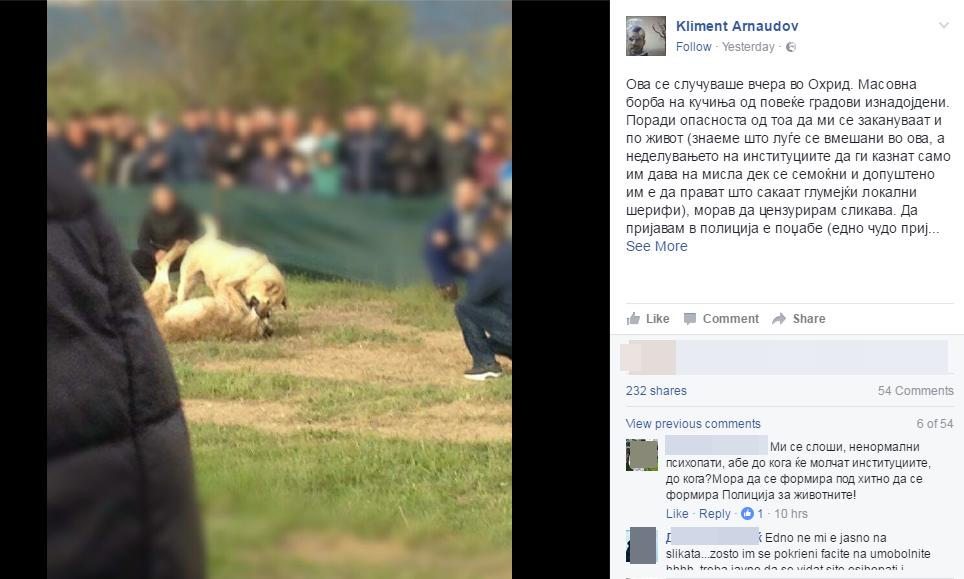 Борби со кучиња во Охрид  Арнаудов  Немоќни сме  полицијата е вмешана   Се спроведуваат ли законите