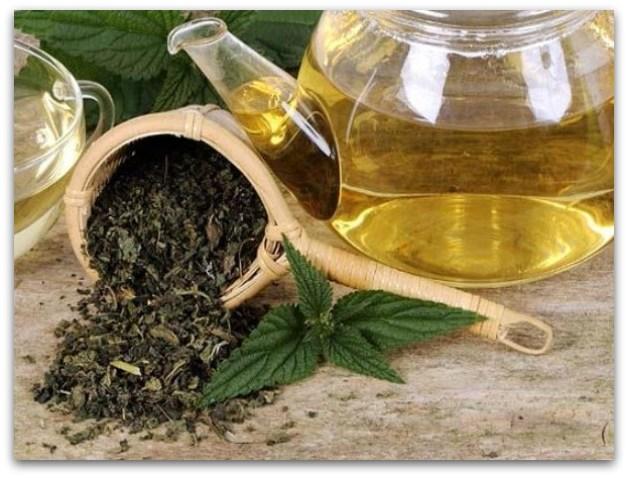 Чај од коприва како лек против анемија