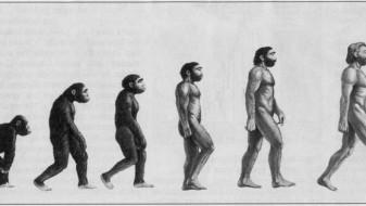 Српски академици бараат ревизија на Дарвиновата теорија