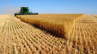(Видео) Владата донесе пакет-одлуки за земјоделците