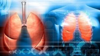 Здравата исхрана ги штити белите дробови