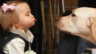 Кучето чува од астма