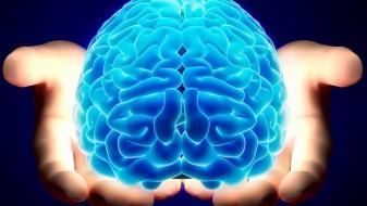 Фитнес за мозок