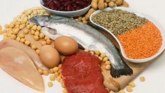 Протеините учествуваат во саморепродукција на клетките