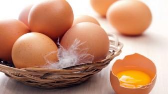 Јајцата ве прават подобри луѓе