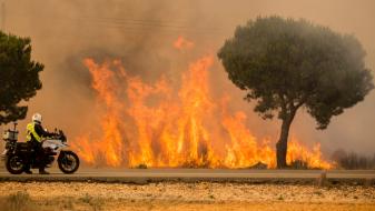 (ВИДЕО) Евакуирани се 1.800 луѓе: Пожарот во Шпанија е ставен под контрола