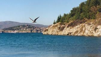 Давеник во Охридско езеро