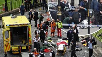Лани 142 жртви од терористичките напади во ЕУ