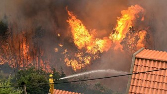Се урна противпожарен авион во Португалија