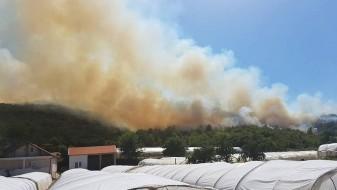 Голем пожар во Струмица