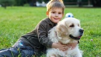 Кучињата го намалуваат ризикот од астма кај децата