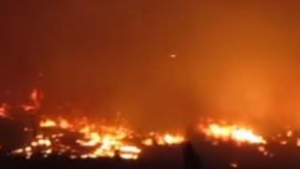 Албанец уапсен за подметнување пожар во Подгорица