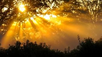Времето утре сончево со услови за краткотраен дожд