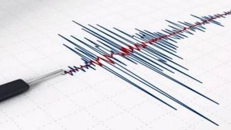 Регистриран земјотрес со епицентар на само шест километри од Охрид