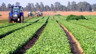 Објавен jавниот повик за поддршка на млади земјоделци