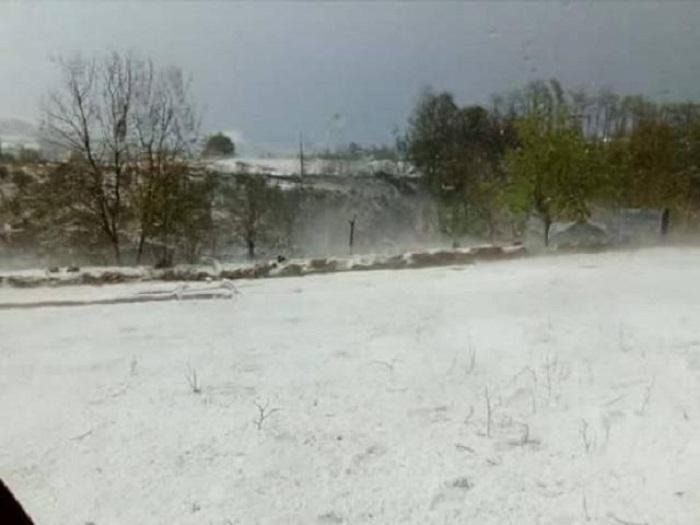 (ФОТО) (ВИДЕО) Невреме во Србија, делови од земјата побелеа од град