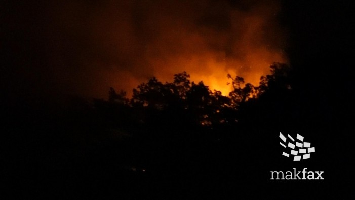 (ВИДЕО) Пожарот што од Матка се пробива кон Водно и Шишево бил подметнат