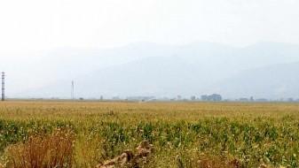 Апел на ЕВН до земјоделците: Внимателно при земјоделските активности под далноводите