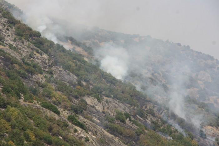 Пожарот кај Трескавец не мирува, пожарникари деноноќно го чуваат манастирот