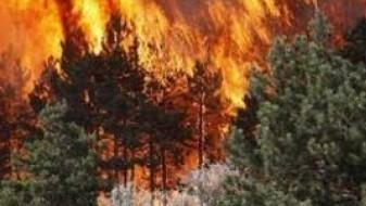 Грција побара помош од ЕУ за справување со пожарите