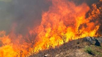 ВМРО-ДПМНЕ: Владата на Заев е неспособна да се справи со пожарите