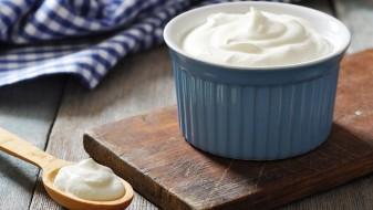 Грција бара од ЕУ: Грчкиот јогурт да не смее да се произведува во друга држава