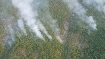 Дождот изгасна дел од пожарите во Македонија