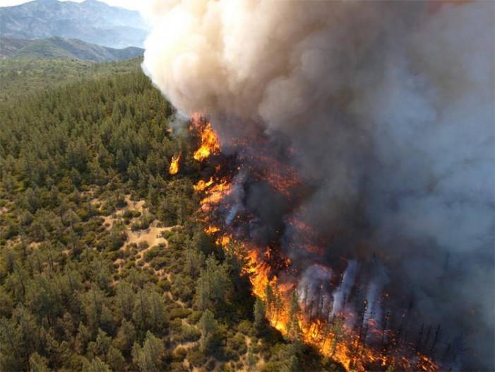 Хрватска: Уапсен пироман кој подметнал 25 пожари