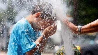 Лесна храна, течности и одмор за време на топлотниот бран