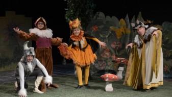 """Во Штип почнува фестивалот за деца """"Малиот принц"""""""