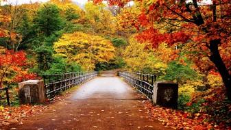 Заврши летото, почнува есента