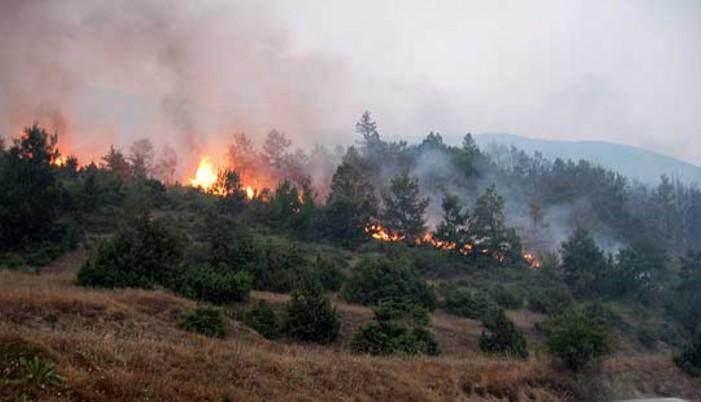 Локализиран пожарот кај делчевските села Драмче и Селник