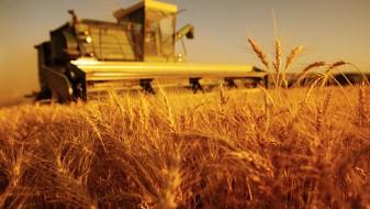 СДСМ демантира дека ќе нема субвенции за сите земјоделци