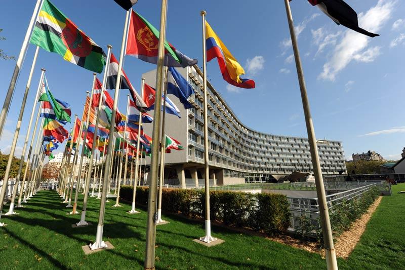 САД ќе го напуштат УНЕСКО