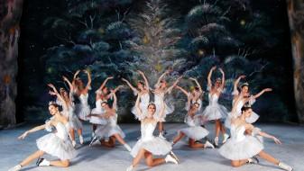 """Балетскиот спектакл """"Оревокршачка"""" на мраз се презакажува за 4 декември"""