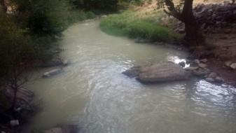 Побеле реката Тополка, има и пцовисани риби